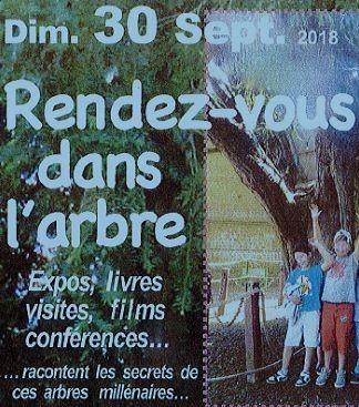Rendez-vous dans l'arbre le dimanche 30 septembre à La Haye de Routot