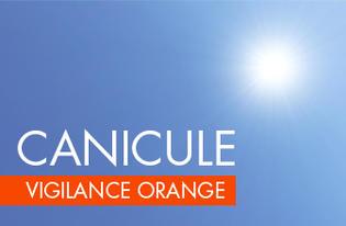 Vigilance orange canicule